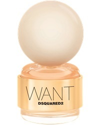 Dsquared2 Want EdP